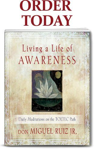 living a life of awareness miguel ruiz jr