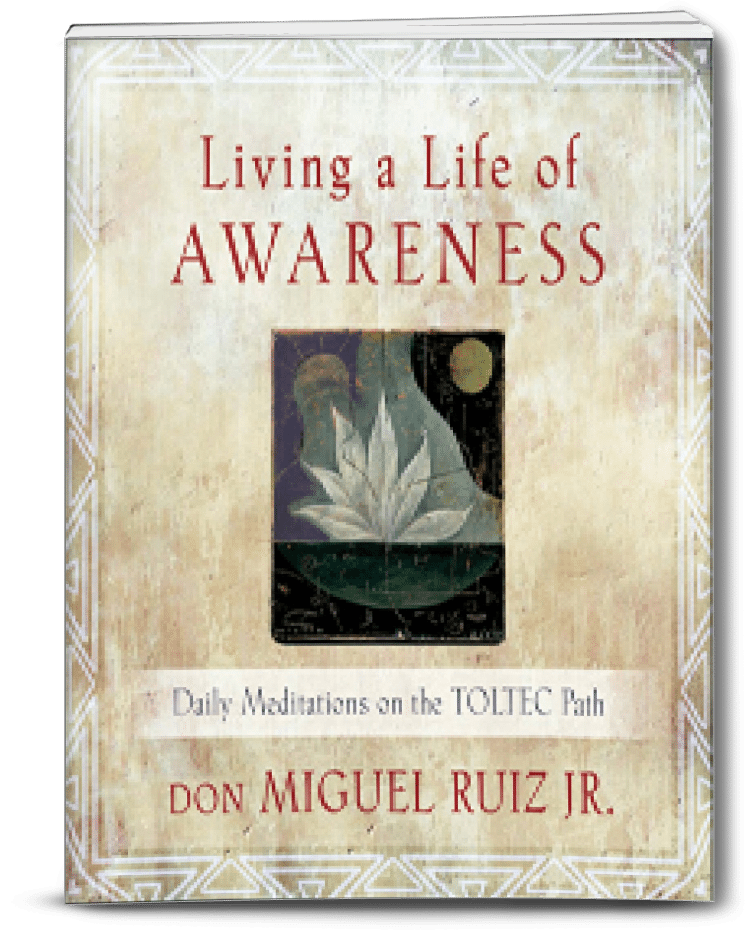 living a life of awareness don miguel ruiz jr