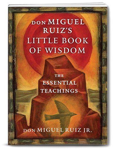 dmr-book-wisdom