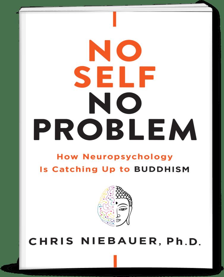 NSNP-final-paperbackfront_753x930 (3)